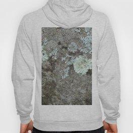 Lichen on granite Hoody