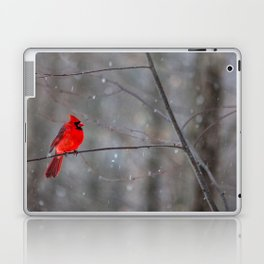 Cardinal In the Snow Laptop & iPad Skin