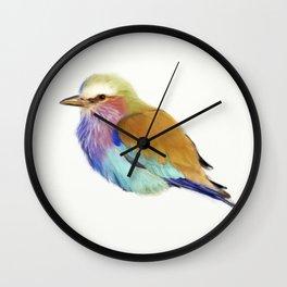 Colorful bird Wall Clock