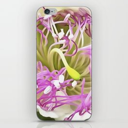 Caper Flower Blossom iPhone Skin