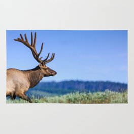 A 6 Point Bull Elk in Yellowstone National Park Rug