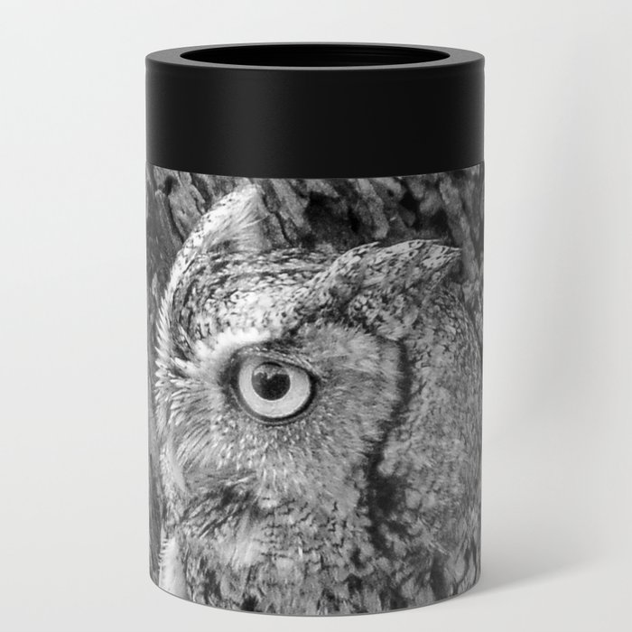 Echo the Screech Owl by Teresa Thompson Can Cooler
