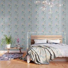 Prettiest Rose Cactus Blue Wallpaper
