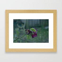 flower's dead Framed Art Print
