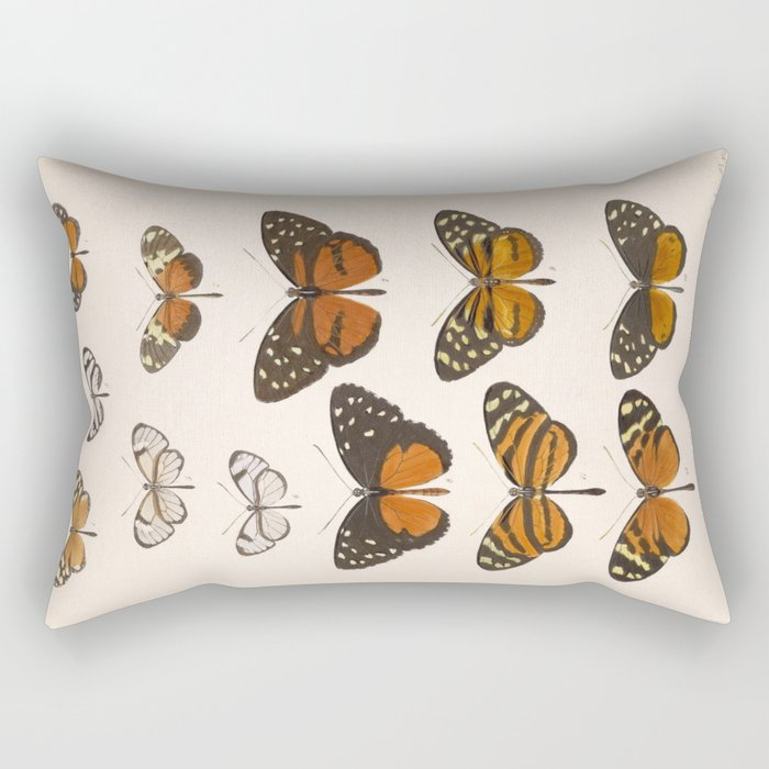 Vintage Scientific Anatomical Insect Butterfly Illustration Vintage Hand Drawn Art Rectangular Pillow