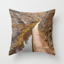 Paw Paw Boardwalk Trail Throw Pillow