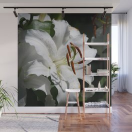 White Lily by Teresa Thompson Wall Mural