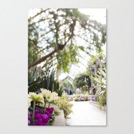 Conservatory Pathway Canvas Print