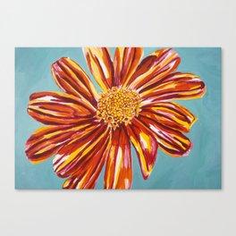 Enriching Daisy Canvas Print