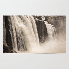 Shoshone Falls in Twin Falls, Idaho Rug