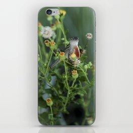 Hello Lizard  iPhone Skin