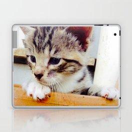 Potted kitten  Laptop & iPad Skin