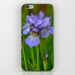 Siberian Iris by Teresa Thompson iPhone Skin