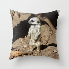 Meerkat20160606 Throw Pillow
