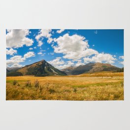 New Zealand landscape with golden grasses in South Island Rug