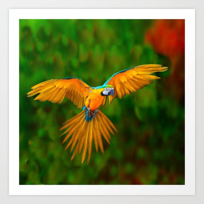 flying golden blue macaw parrot green art art print by sharlesart