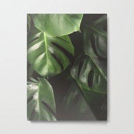 Monstera Leaves Metal Print