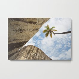 Virgin Gorda Batholithic Boulders and a Sunny Palm Tree Metal Print