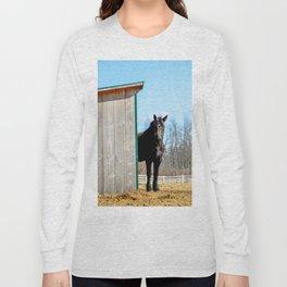 Percheron Horse by Teresa Thompson Long Sleeve T-shirt