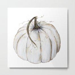 White Pumpkin Metal Print