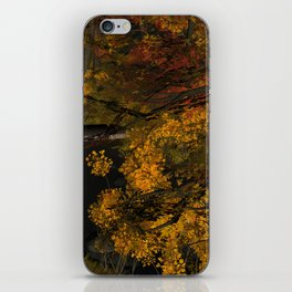 Autumn Leaves and Stream iPhone Skin