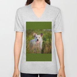 Single white stray tyke dog at the meadow Unisex V-Neck