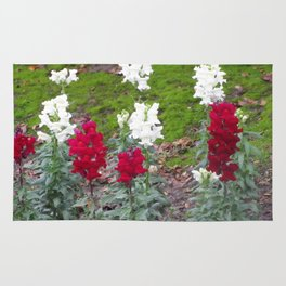 Red and White Hyacinths Rug