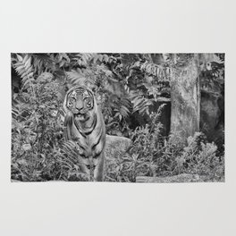 Tiger Mimicry Rug