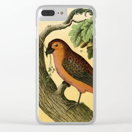 7 Birds Clear iPhone Case