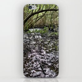 Dirty South iPhone Skin