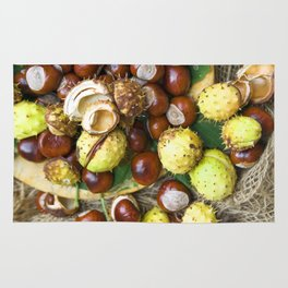 AUTUMN STILL LIFE  Rug