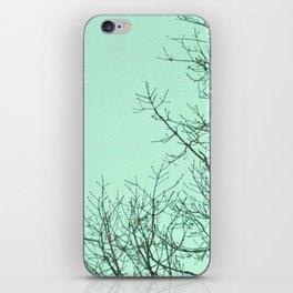 Winter Sky iPhone Skin