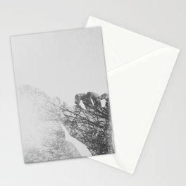 Blombürg Stationery Cards
