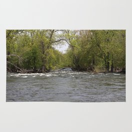 Springtime on the Fox River Rug