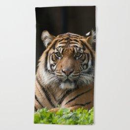 Look into my eyes by Teresa Thompson Beach Towel