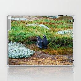 Magellanic Penguins in Love Laptop & iPad Skin