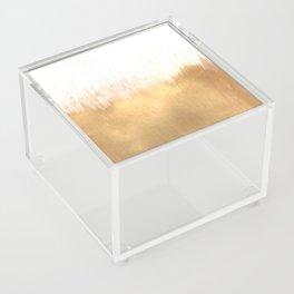 Brushed Gold Acrylic Box