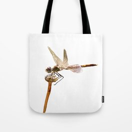 Dragonfly Resting On Seed Head Isolated Tote Bag