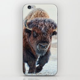 American Bison iPhone Skin