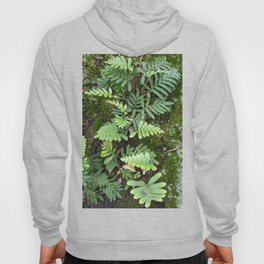 Moss and Fern Hoody