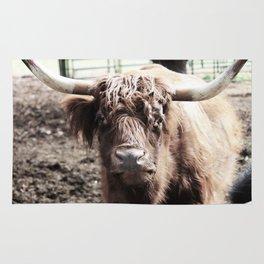 Longhorn Rug