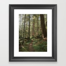 Wonderland Forest Trail Framed Art Print
