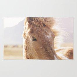 Golden Horse Photograph Rug