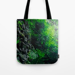 Rocks and Ferns Tote Bag