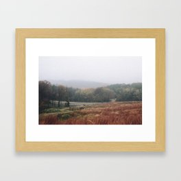 Fall Leaves in Wisconsin Framed Art Print