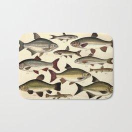Vintage Illustration of Various Fishes (1902) Bath Mat