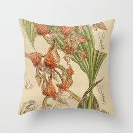 Gongora latisepala Throw Pillow