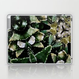 Succulents on Show No 1 Laptop & iPad Skin