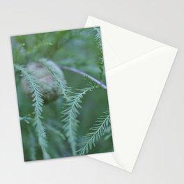 baldcypress Stationery Cards