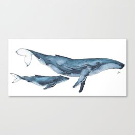 Whale & whale calf Canvas Print